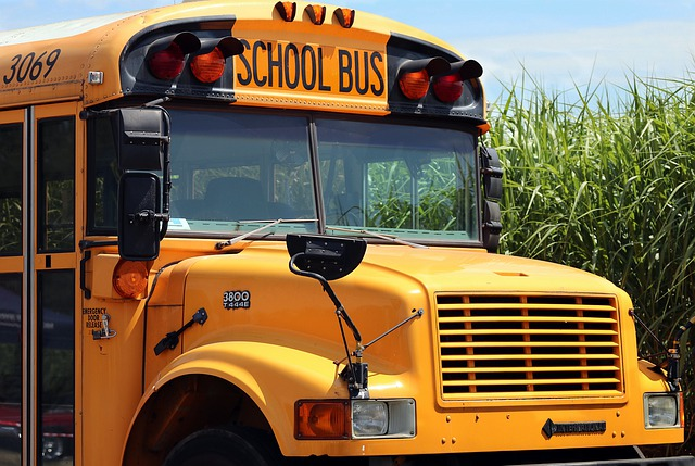What to do when you see flashing red lights on a school bus?