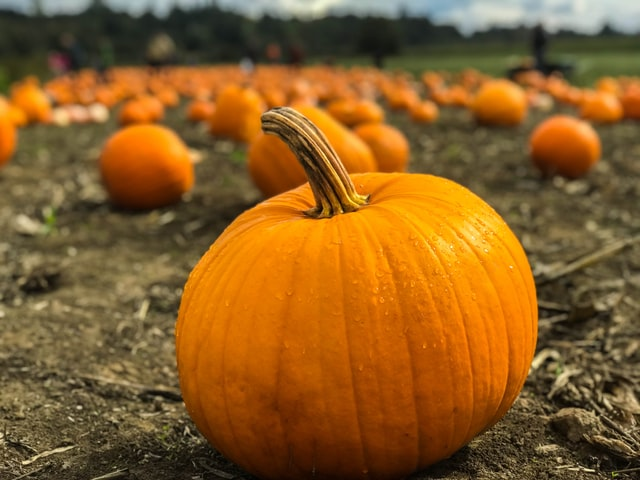 Tips for a safe Halloween no matter how you celebrate